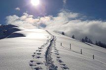 Skitouren in den Kitzbüheler Alpen